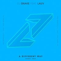 A Different Way (feat. Lauv) [DEVAULT Remix] - Single - DJ Snake mp3 download