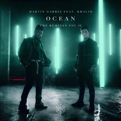 Ocean (Myrne Remix) - Martin Garrix Feat. Khalid mp3 download
