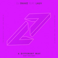 A Different Way (feat. Lauv) [Henry Fong Remix] - Single - DJ Snake mp3 download