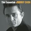 Johnny Cash - Ragged Old Flag  artwork