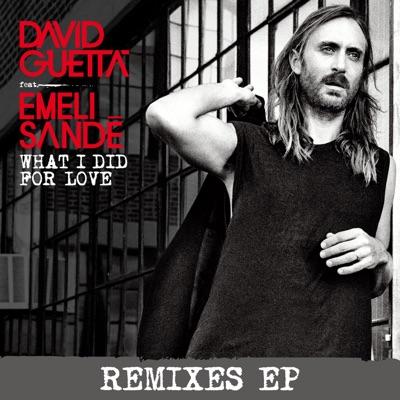 What I Did For Love (Vinai Remix) - David Guetta Feat. Emeli Sandé mp3 download