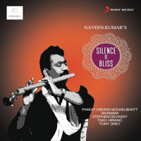 Silence Is Bliss (feat. Pandit Vishwa Mohan Bhatt) Naveen Kumar MP3