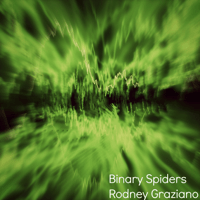 Binary Spiders Rodney Graziano