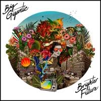 Brighter Future - Big Gigantic mp3 download