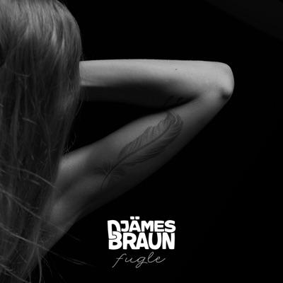 Fugle - Djämes Braun mp3 download