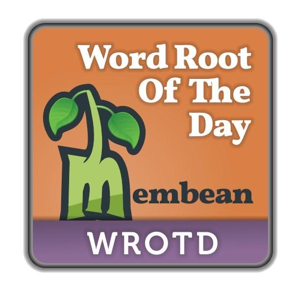 Root Word Anti Membean - The Best Ant 2018