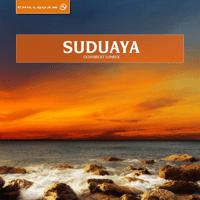 Patience Suduaya MP3