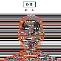罪名 C-12