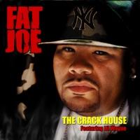 The Crack House (feat. Lil Wayne) - Single - Fat Joe mp3 download