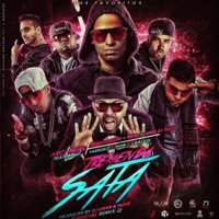 Tremenda Sata, Pt. 2 (Remix) [feat. Arcángel, Ñengo Flow, Ñejo, Lui-G 21+, Farruko, Zion & J Balvin] - Single - DJ Luian mp3 download