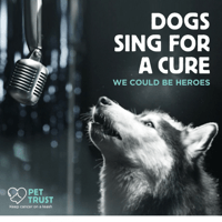 We Could Be Heroes Dogs Sing For a Cure MP3