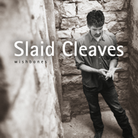 Hearts Break Slaid Cleaves MP3