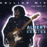 The Moon Is Full Albert Collins MP3