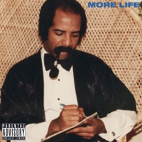 Two Birds, One Stone - Single - Drake mp3 download
