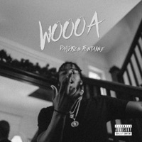 Woooa - Single - Pardison Fontaine mp3 download