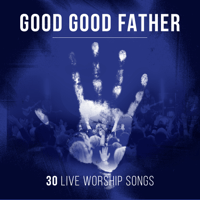 Great Is Your Faithfulness (Live) Spring Harvest MP3