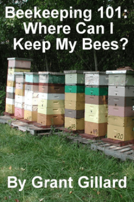 Beekeeping 101: Where Can I Keep My Bees? - Grant Gillard