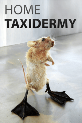 Home Taxidermy - Authors and Editors of Instructables