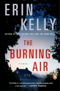 The Burning Air - Erin Kelly pdf download