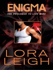 Enigma - Lora Leigh pdf download
