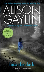 Into the Dark - Alison Gaylin pdf download