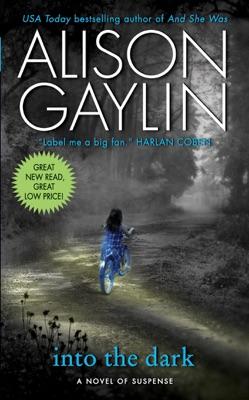 Into the Dark - Alison Gaylin pdf download