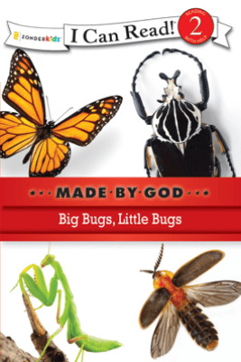 Big Bugs, Little Bugs - Zondervan