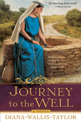 Journey to the Well - Diana Wallis Taylor
