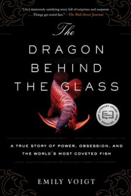 The Dragon Behind the Glass - Emily Voigt