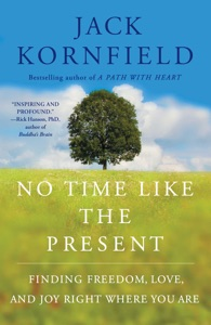 No Time Like the Present - Jack Kornfield pdf download