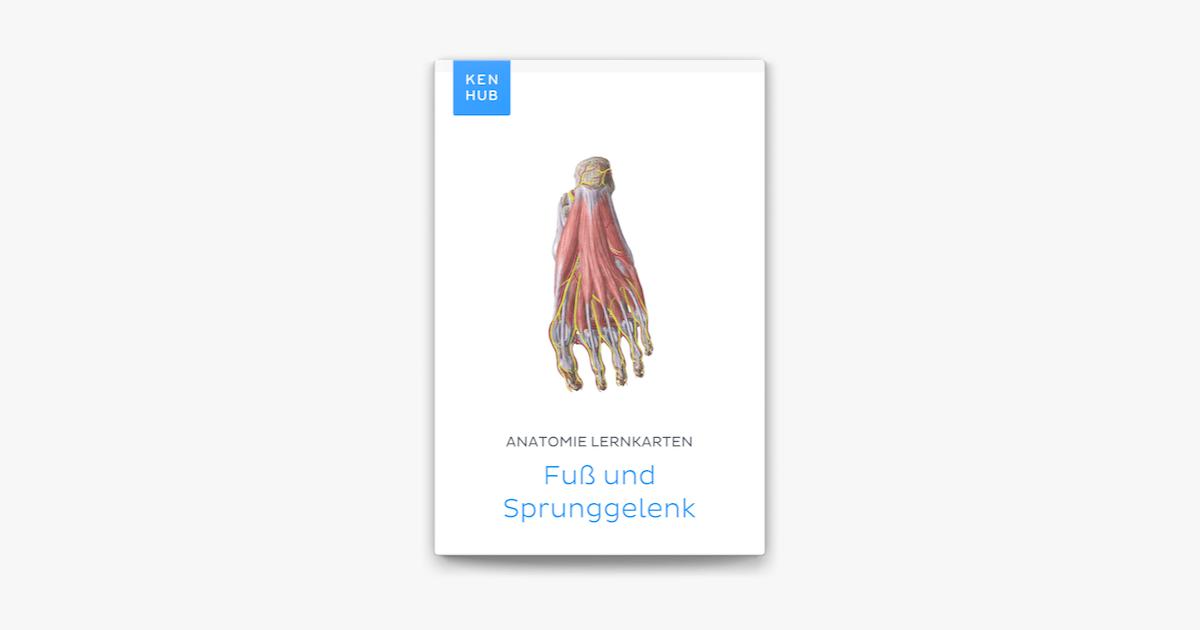 Anatomie Lernkarten: Fuß und Sprunggelenk in Apple Books