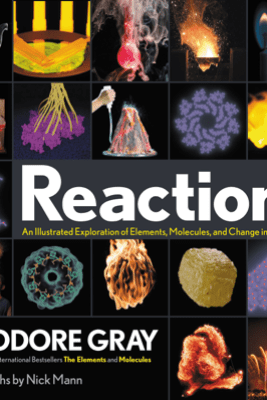 Reactions - Theodore Gray