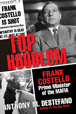 Top Hoodlum - Anthony M. DeStefano