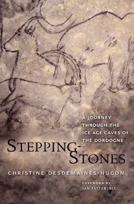 Stepping-Stones - Christine Desdemaines-Hugon pdf download