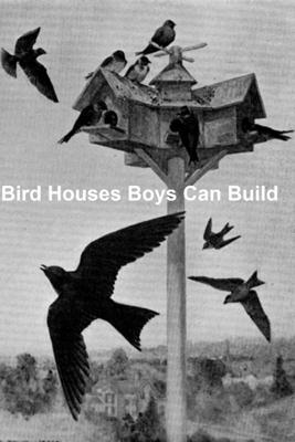 Bird Houses Boys Can Build - Albert Siepert