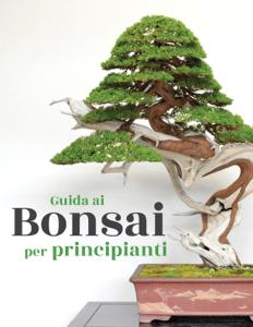 Guida ai Bonsai per principianti - Bonsai Empire pdf download