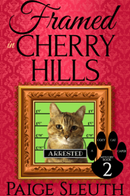 Framed in Cherry Hills - Paige Sleuth