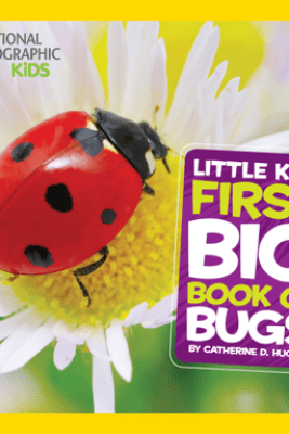 National Geographic Little Kids First Big Book of Bugs - Catherine D. Hughes
