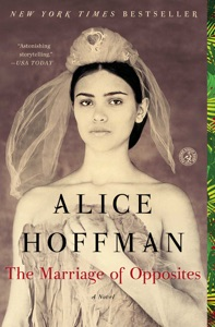 The Marriage of Opposites - Alice Hoffman pdf download