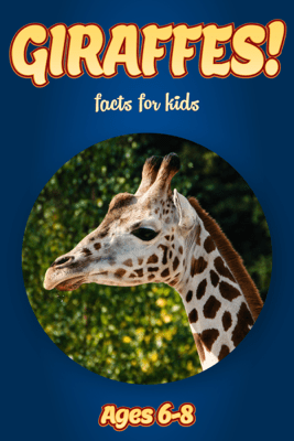Facts About Giraffes For Kids 6-8 - Cindy Bowdoin