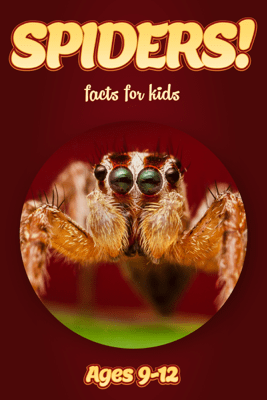 Spider Facts For Kids 9-12 - Cindy Bowdoin