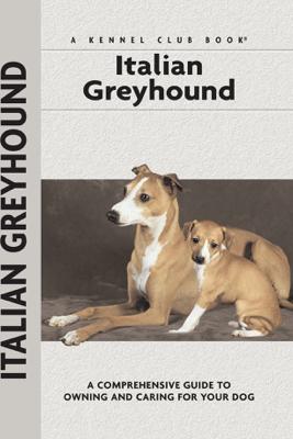 Italian Greyhound - Dino Mazzanti