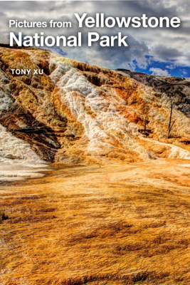 Pictures from Yellowstone National Park - Tony Xu
