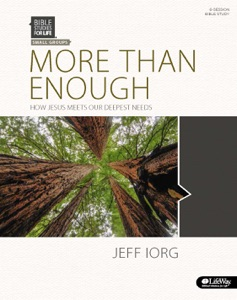 More Than Enough - Bible Study Book - Ronnie W. Floyd & Jeff Iorg pdf download