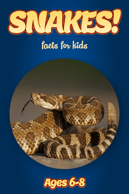 Facts About Snakes For Kids 6-8 - Cindy Bowdoin