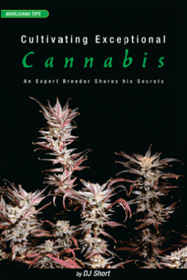 Cultivating Exceptional Cannabis - DJ Short
