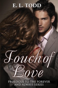Touch of Love - E. L. Todd pdf download