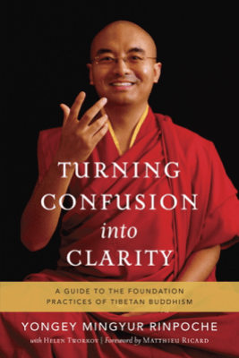 Turning Confusion into Clarity - Yongey Mingyur Rinpoche & Helen Tworkov
