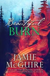 Beautiful Burn: A Novel - Jamie McGuire pdf download