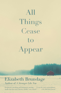 All Things Cease to Appear - Elizabeth Brundage pdf download